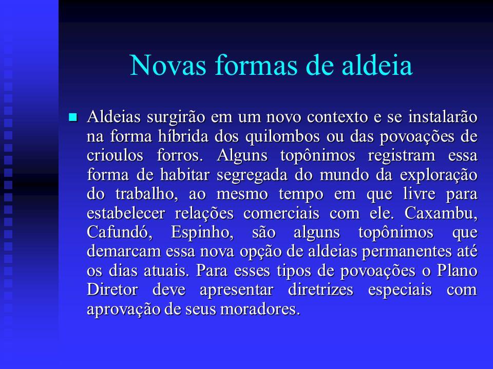 Novas formas de aldeia Aldeias surgirão em um novo contexto e se instalarão na forma híbrida dos quilombos ou das povoações de crioulos forros. Alguns