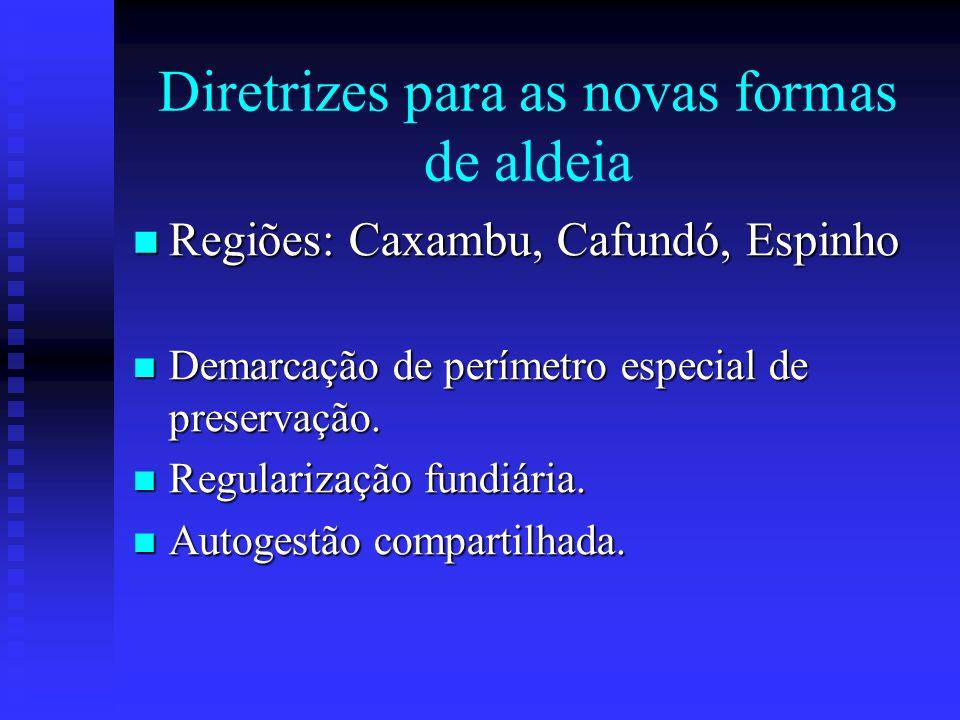 Diretrizes para as novas formas de aldeia Regiões: Caxambu, Cafundó, Espinho Regiões: Caxambu, Cafundó, Espinho Demarcação de perímetro especial de pr