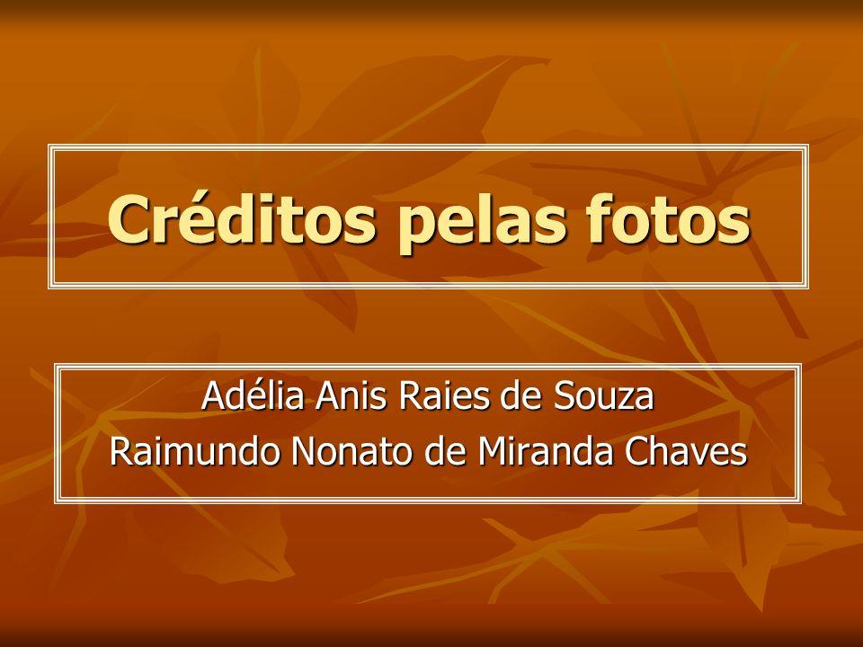 Créditos pelas fotos Adélia Anis Raies de Souza Raimundo Nonato de Miranda Chaves