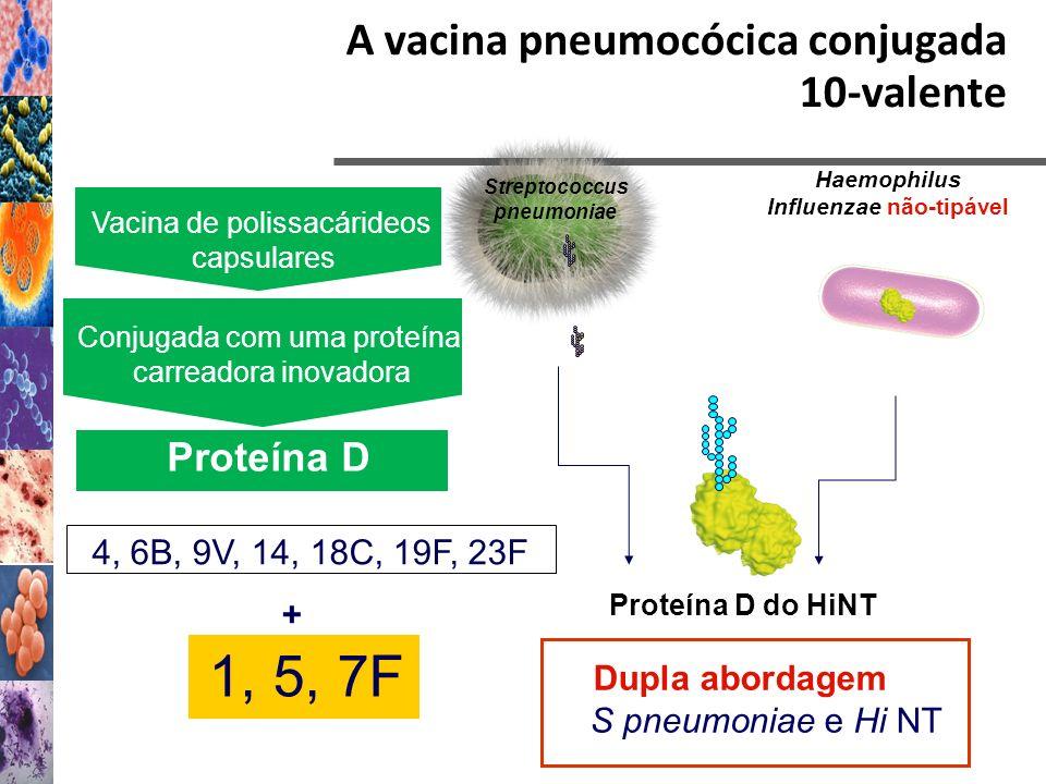 A vacina pneumocócica conjugada 10-valente Streptococcus pneumoniae Haemophilus Influenzae não-tipável Proteína D do HiNT Vacina de polissacárideos ca