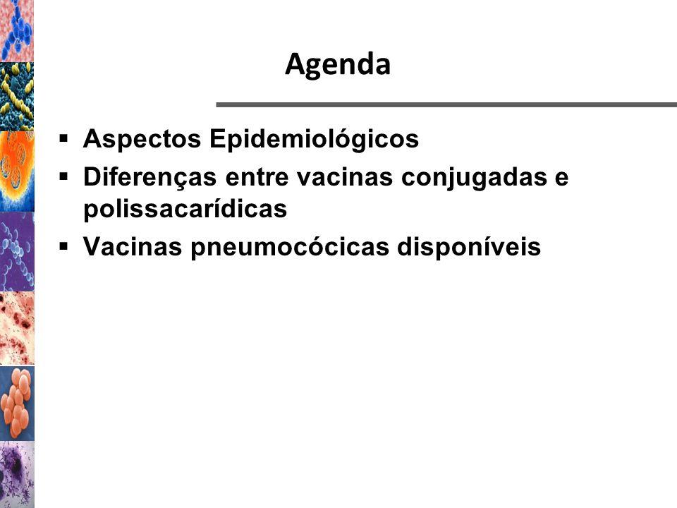 Agenda Aspectos Epidemiológicos Diferenças entre vacinas conjugadas e polissacarídicas Vacinas pneumocócicas disponíveis
