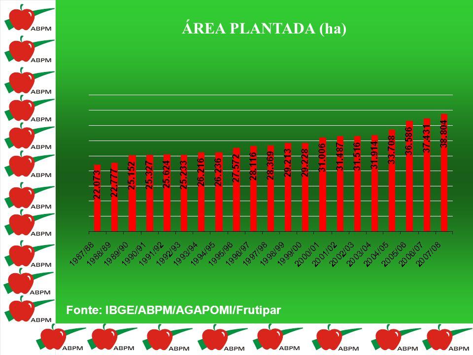 ÁREA PLANTADA (ha) Fonte: IBGE/ABPM/AGAPOMI/Frutipar