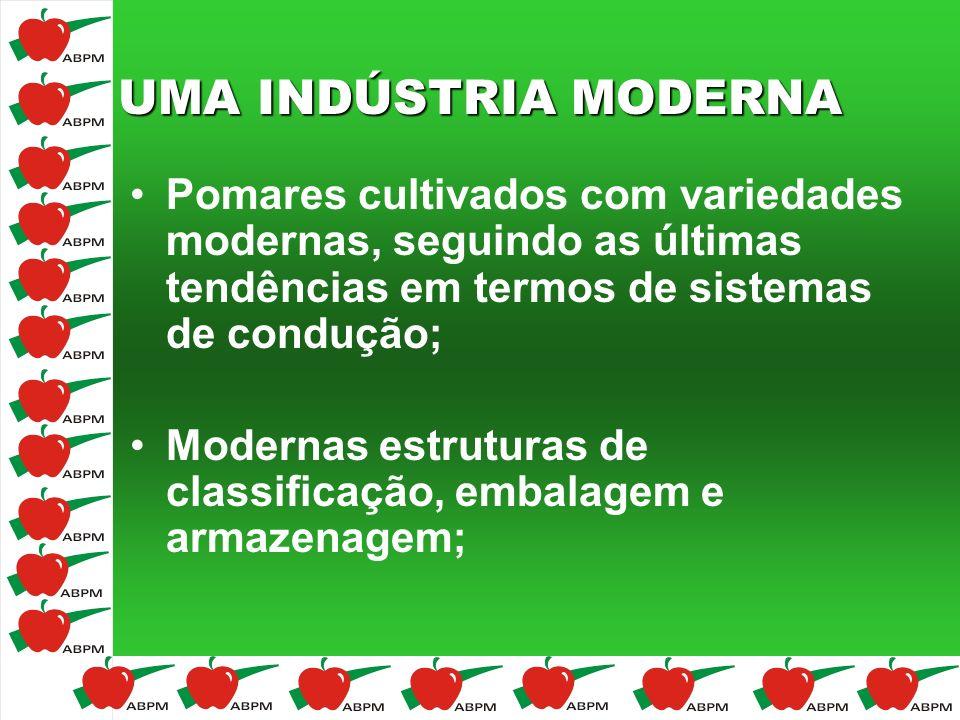 UMA INDÚSTRIA MODERNA Pomares cultivados com variedades modernas, seguindo as últimas tendências em termos de sistemas de condução; Modernas estrutura