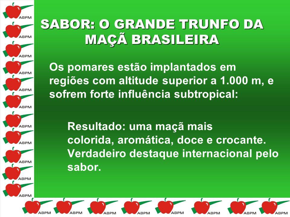 SABOR: O GRANDE TRUNFO DA MAÇÃ BRASILEIRA Os pomares estão implantados em regiões com altitude superior a 1.000 m, e sofrem forte influência subtropic