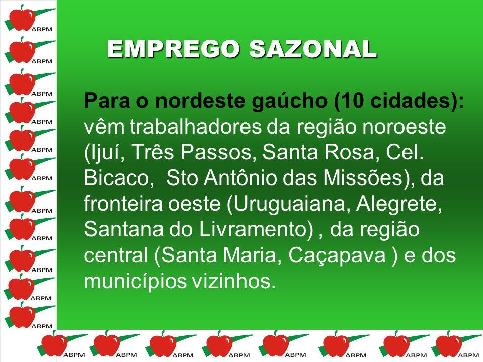 EMPREGO SAZONAL Para o nordeste gaúcho (10 cidades): vêm trabalhadores da região noroeste (Ijuí, Três Passos, Santa Rosa, Cel. Bicaco, Sto Antônio das