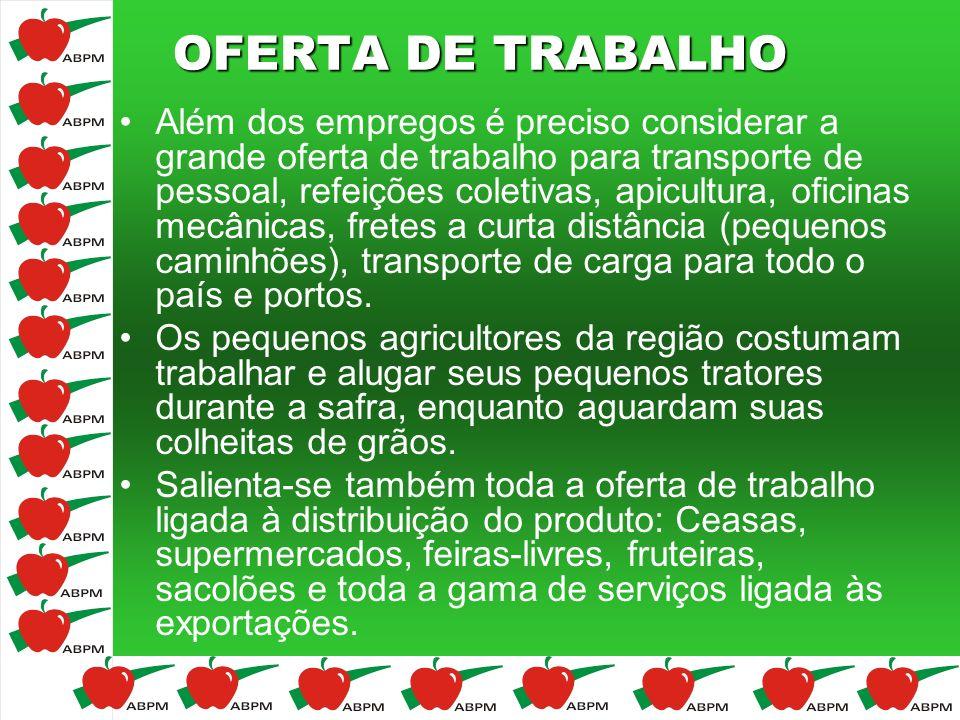 OFERTA DE TRABALHO Além dos empregos é preciso considerar a grande oferta de trabalho para transporte de pessoal, refeições coletivas, apicultura, ofi