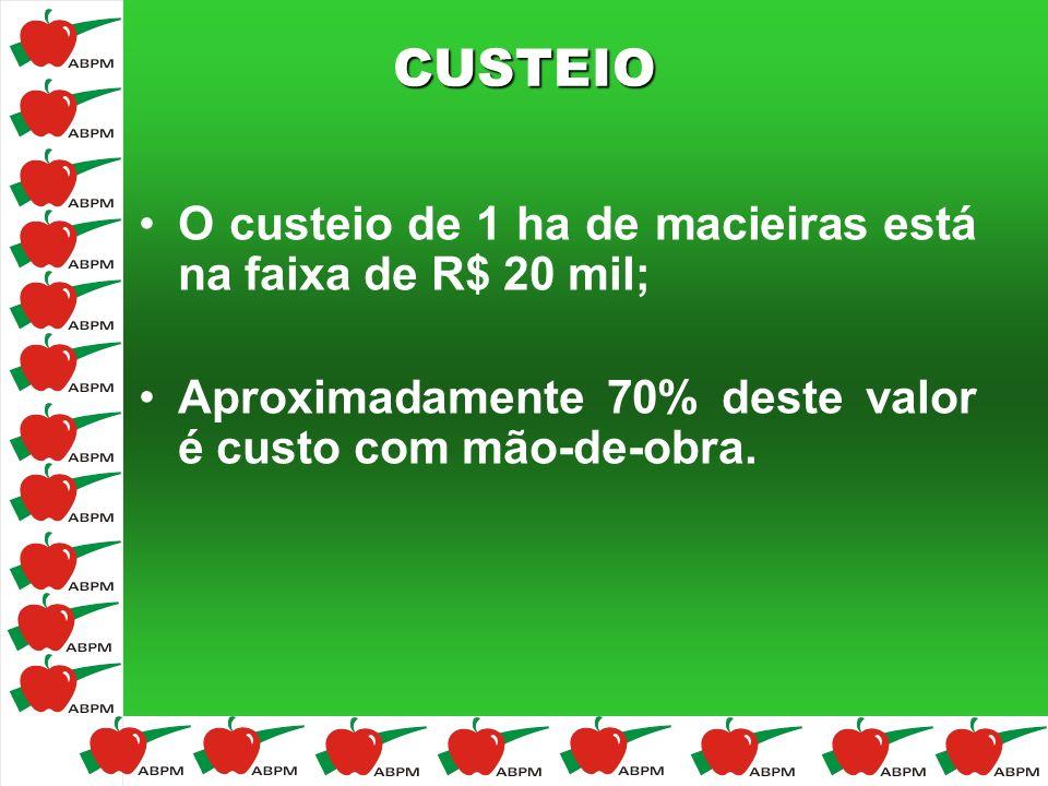 CUSTEIO O custeio de 1 ha de macieiras está na faixa de R$ 20 mil; Aproximadamente 70% deste valor é custo com mão-de-obra.
