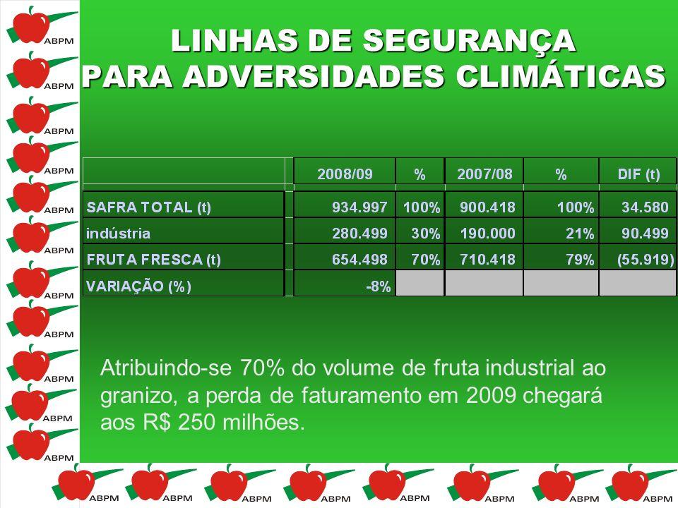 LINHAS DE SEGURANÇA PARA ADVERSIDADES CLIMÁTICAS Atribuindo-se 70% do volume de fruta industrial ao granizo, a perda de faturamento em 2009 chegará ao
