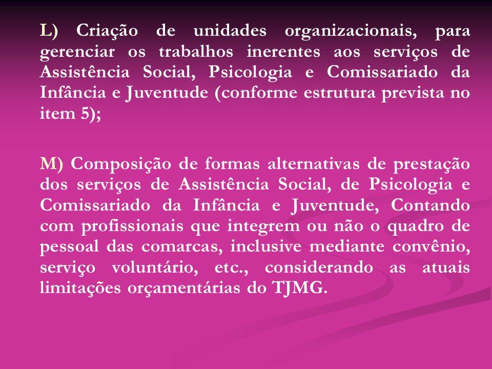L) Criação de unidades organizacionais, para gerenciar os trabalhos inerentes aos serviços de Assistência Social, Psicologia e Comissariado da Infânci