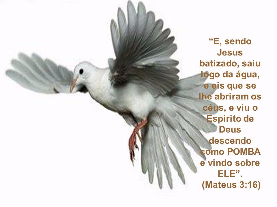 E o Espírito Santo desceu sobre ele em forma corpórea, como POMBA; e ouviu- se uma voz do céu, que dizia: Tu és o meu Filho amado, em ti me comprazo.