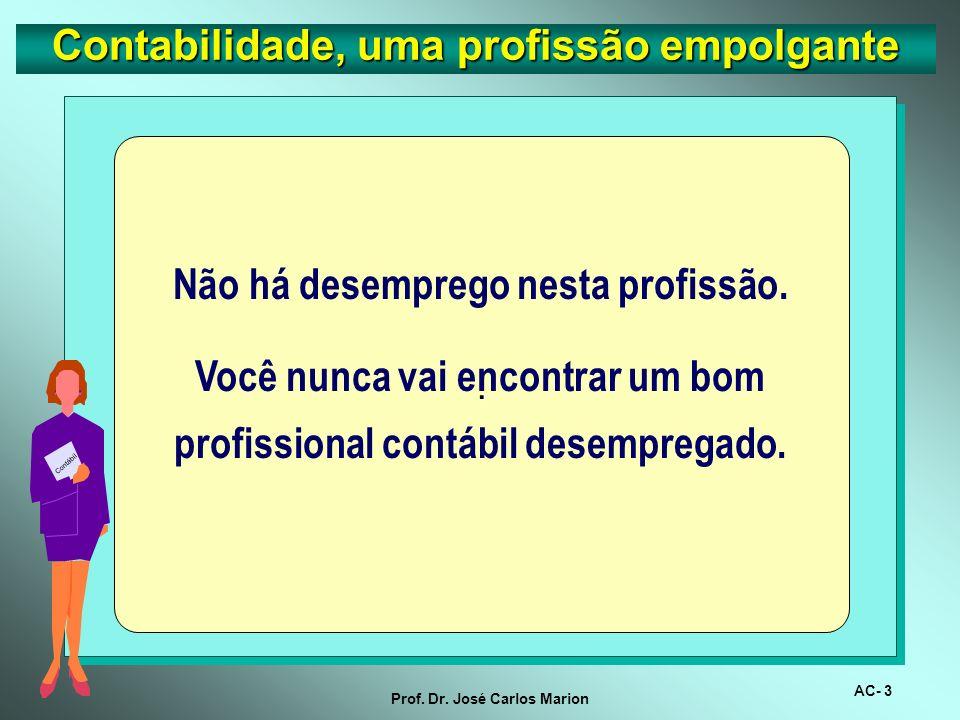AC- 2 Prof. Dr. José Carlos Marion Contabilidade, uma profissão empolgante CONTADOR A profissão do terceiro milênio São excelentes as perspectivas par