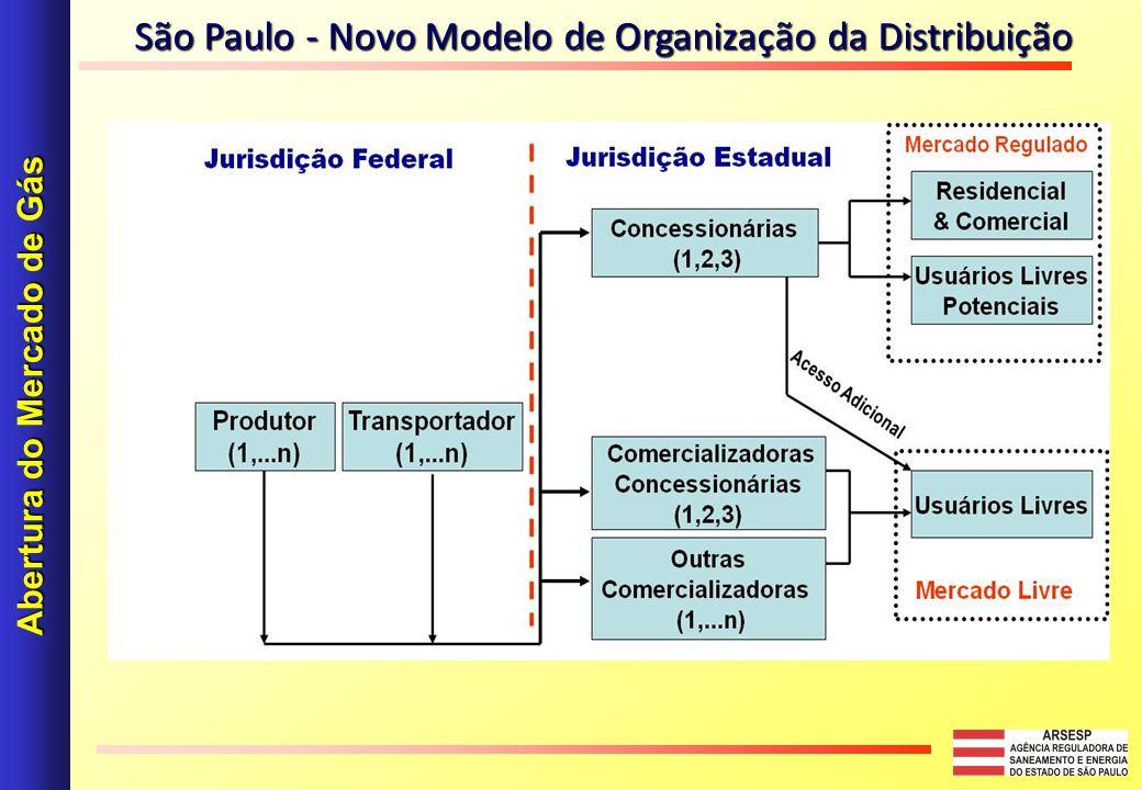 Abertura do Mercado de Gás São Paulo - Novo Modelo de Organização da Distribuição