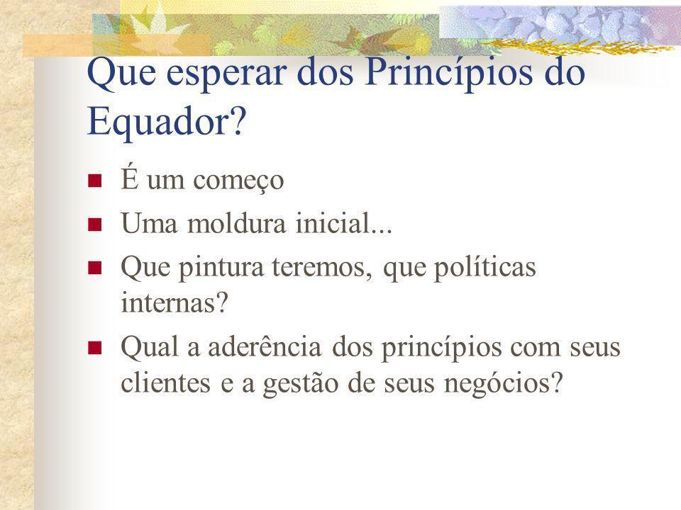 Que esperar dos Princípios do Equador? É um começo Uma moldura inicial... Que pintura teremos, que políticas internas? Qual a aderência dos princípios