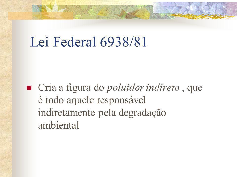 Lei Federal 6938/81 Cria a figura do poluidor indireto, que é todo aquele responsável indiretamente pela degradação ambiental