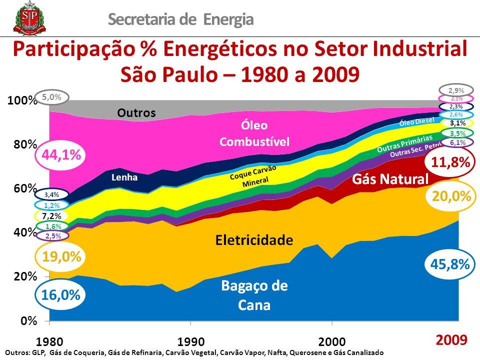 Secretaria de Energia 2,3% Participação % Energéticos no Setor Industrial São Paulo – 1980 a 2009 2009 19,0% 16,0% 44,1% 20,0% 45,8% 7,2% 11,8% 2,1% 1,2% 5,0% 2,9% 3,1% 6,1% 3,5% 3,4% 1,6% 2,5% 2,6% Outros: GLP, Gás de Coqueria, Gás de Refinaria, Carvão Vegetal, Carvão Vapor, Nafta, Querosene e Gás Canalizado