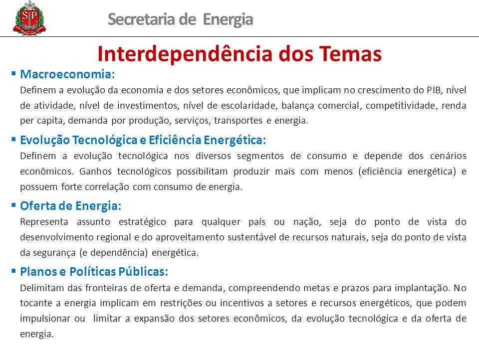 Secretaria de Energia Interdependência dos Temas Macroeconomia: Definem a evolução da economia e dos setores econômicos, que implicam no crescimento do PIB, nível de atividade, nível de investimentos, nível de escolaridade, balança comercial, competitividade, renda per capita, demanda por produção, serviços, transportes e energia.
