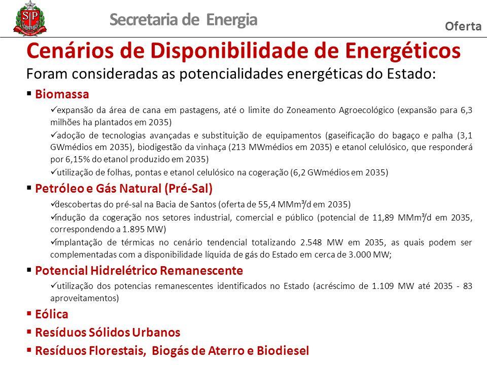 Secretaria de Energia Cenários de Disponibilidade de Energéticos Foram consideradas as potencialidades energéticas do Estado: Biomassa expansão da áre