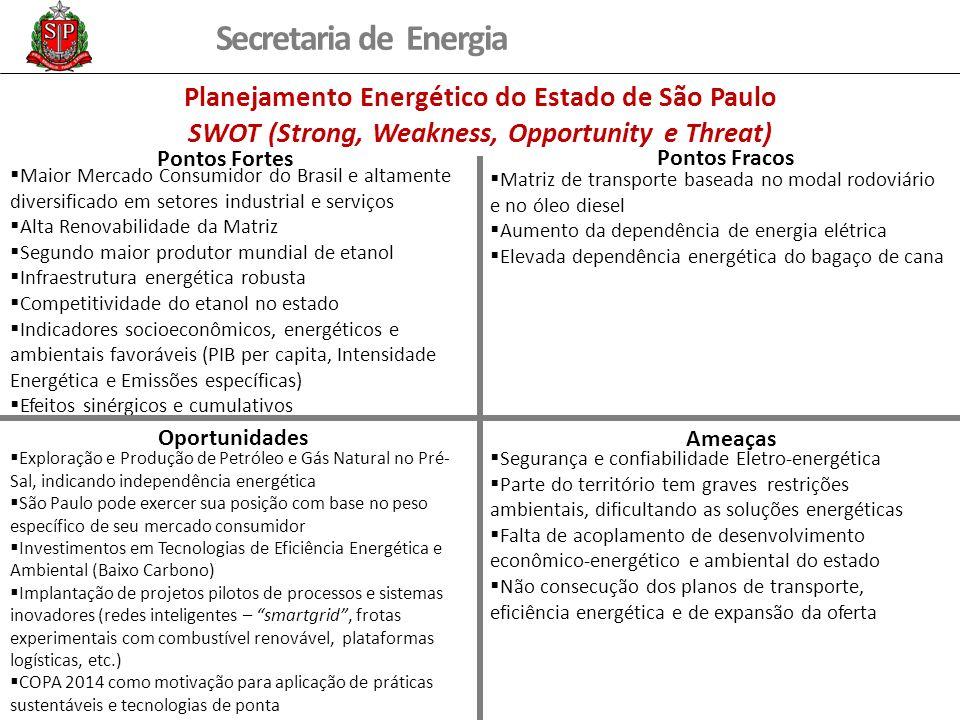 Secretaria de Energia Maior Mercado Consumidor do Brasil e altamente diversificado em setores industrial e serviços Alta Renovabilidade da Matriz Segu