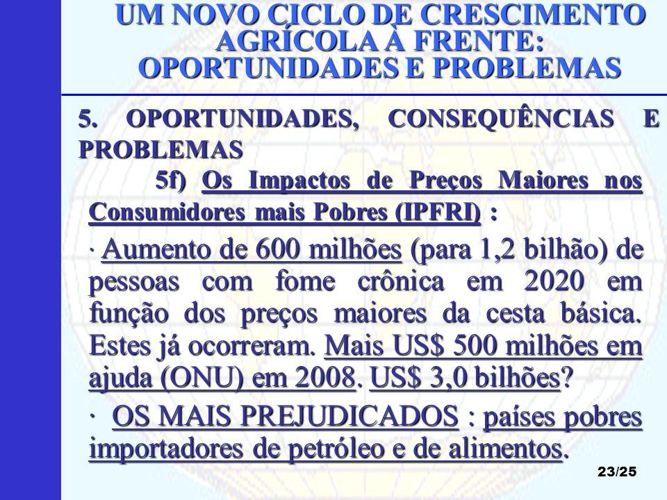 UM NOVO CICLO DE CRESCIMENTO AGRÍCOLA À FRENTE: OPORTUNIDADES E PROBLEMAS 23/25 5f) Os Impactos de Preços Maiores nos Consumidores mais Pobres (IPFRI)