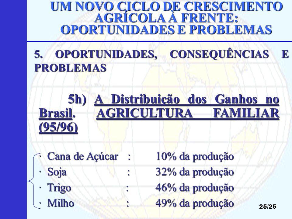 UM NOVO CICLO DE CRESCIMENTO AGRÍCOLA À FRENTE: OPORTUNIDADES E PROBLEMAS 25/25 5h) A Distribuição dos Ganhos no Brasil. AGRICULTURA FAMILIAR (95/96)