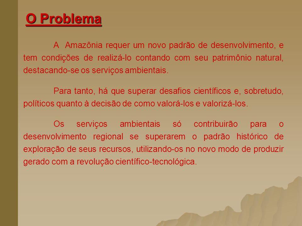 O Problema A Amazônia requer um novo padrão de desenvolvimento, e tem condições de realizá-lo contando com seu patrimônio natural, destacando-se os se