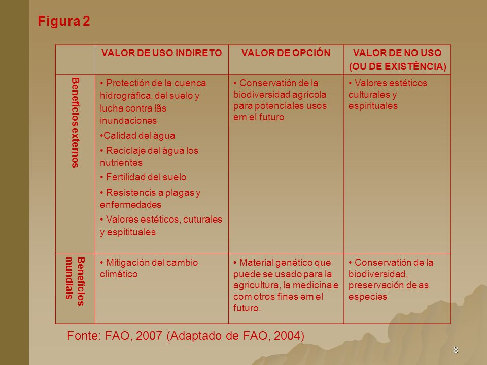 8 Figura 2 VALOR DE USO INDIRETOVALOR DE OPCIÓNVALOR DE NO USO (OU DE EXISTÊNCIA) Benefícios externos Protectión de la cuenca hidrográfica, del suelo
