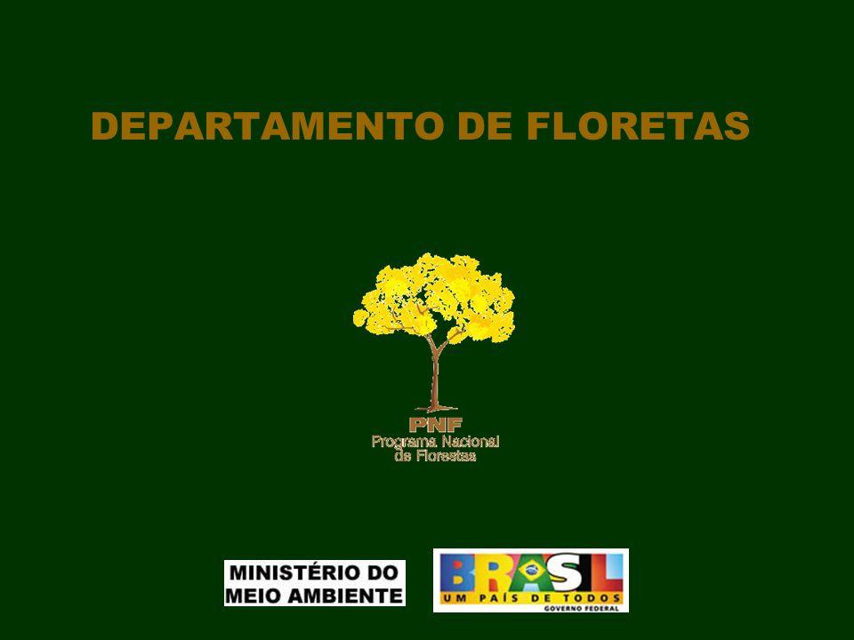 SECRETARIA DE BIODIVERSIDADE E FLORESTAS - SBF MINISTÉRIO DO MEIO AMBIENTE - MMA Novembro de 2007 Departamento de Florestas Simpósio Nacional sobre Reflorestamento Ambiental