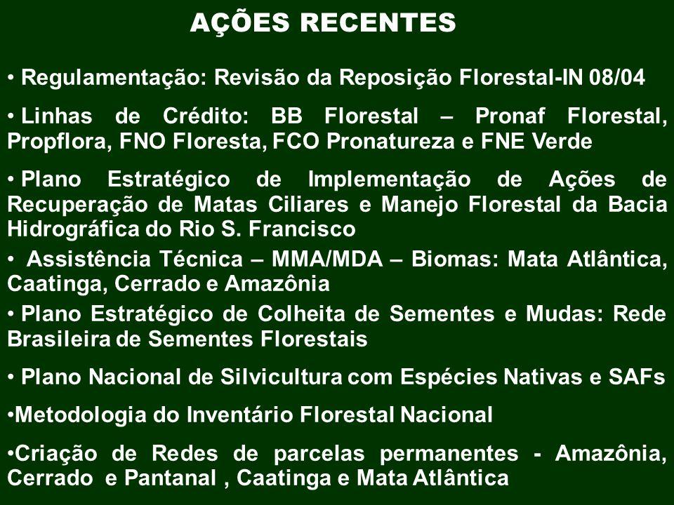 AÇÕES RECENTES Regulamentação: Revisão da Reposição Florestal-IN 08/04 Linhas de Crédito: BB Florestal – Pronaf Florestal, Propflora, FNO Floresta, FC