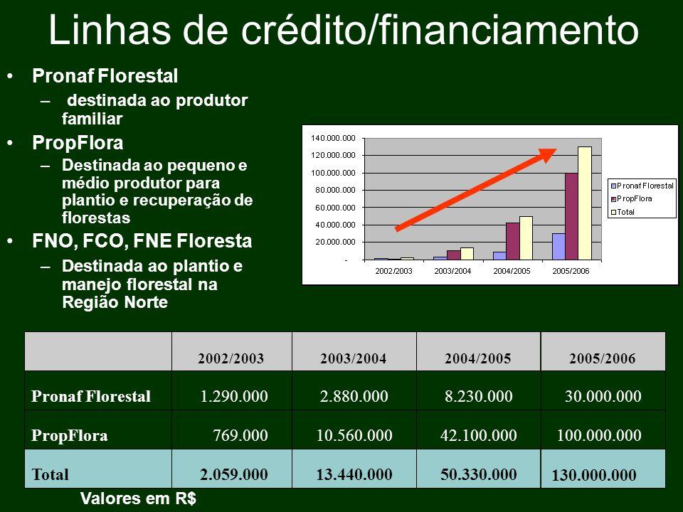 Linhas de crédito/financiamento Pronaf Florestal – destinada ao produtor familiar PropFlora –Destinada ao pequeno e médio produtor para plantio e recu
