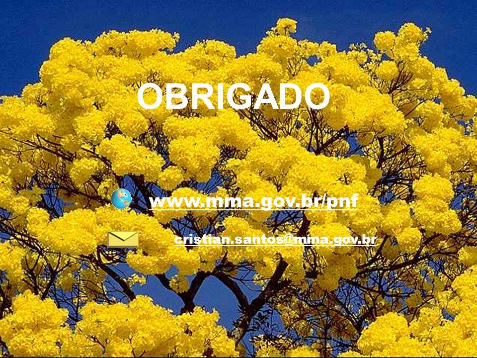 cristian.santos@mma.gov.br www.mma.gov.br/pnf OBRIGADO