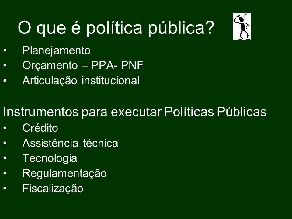 O que é política pública? Planejamento Orçamento – PPA- PNF Articulação institucional Instrumentos para executar Políticas Públicas Crédito Assistênci