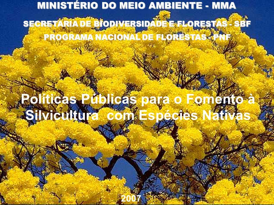 SECRETARIA DE BIODIVERSIDADE E FLORESTAS - SBF MINISTÉRIO DO MEIO AMBIENTE - MMA 2007 PROGRAMA NACIONAL DE FLORESTAS - PNF Políticas Públicas para o F