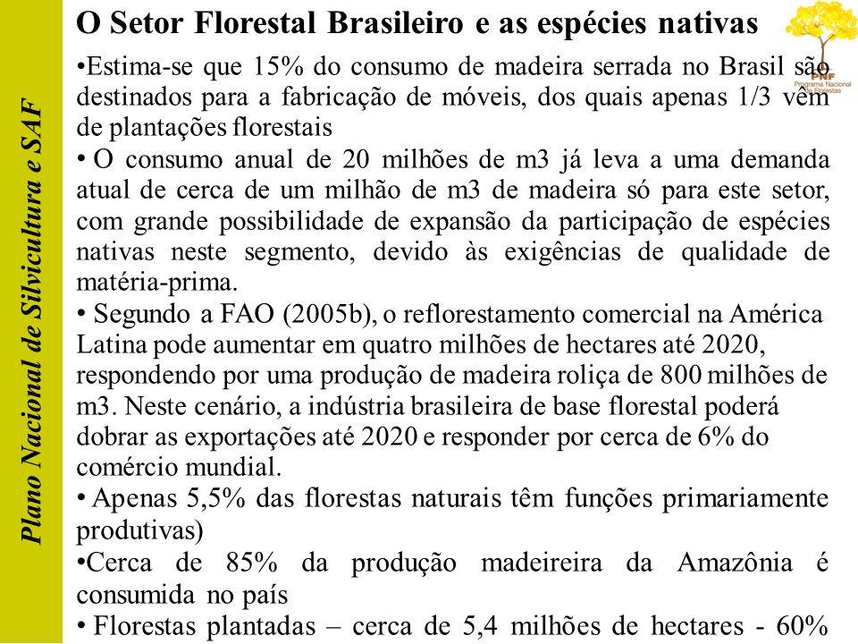 O Setor Florestal Brasileiro e as espécies nativas Plano Nacional de Silvicultura e SAF Estima-se que 15% do consumo de madeira serrada no Brasil são