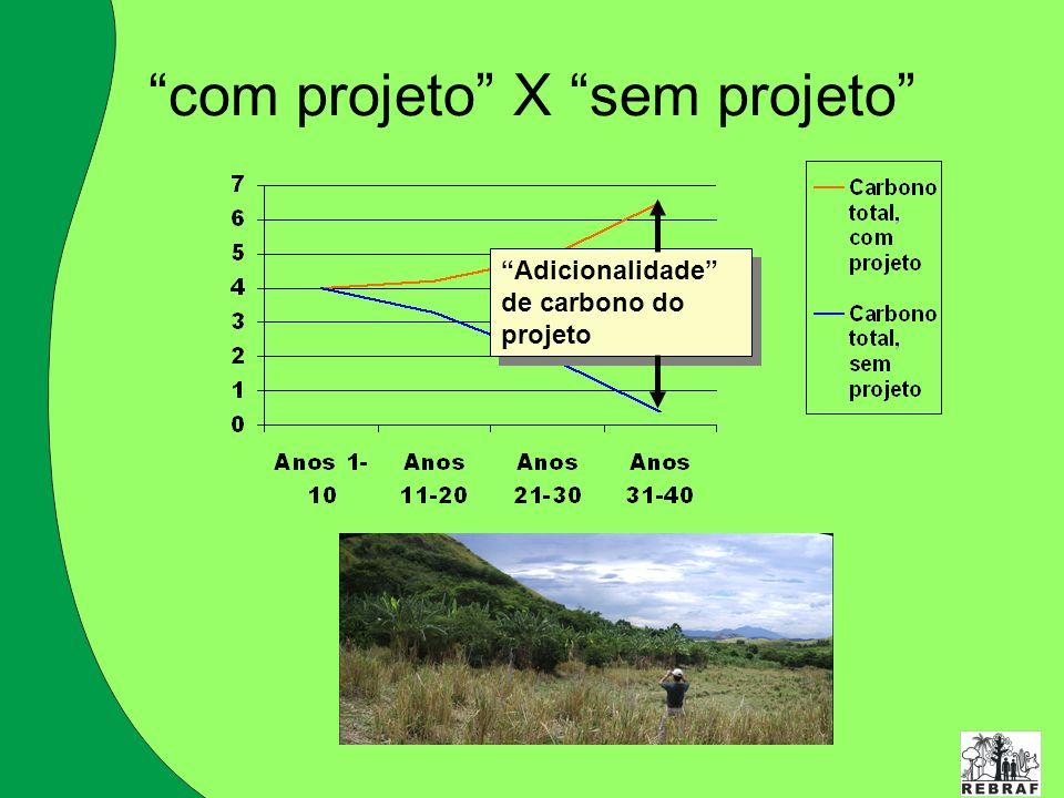 com projeto X sem projeto Adicionalidade de carbono do projeto