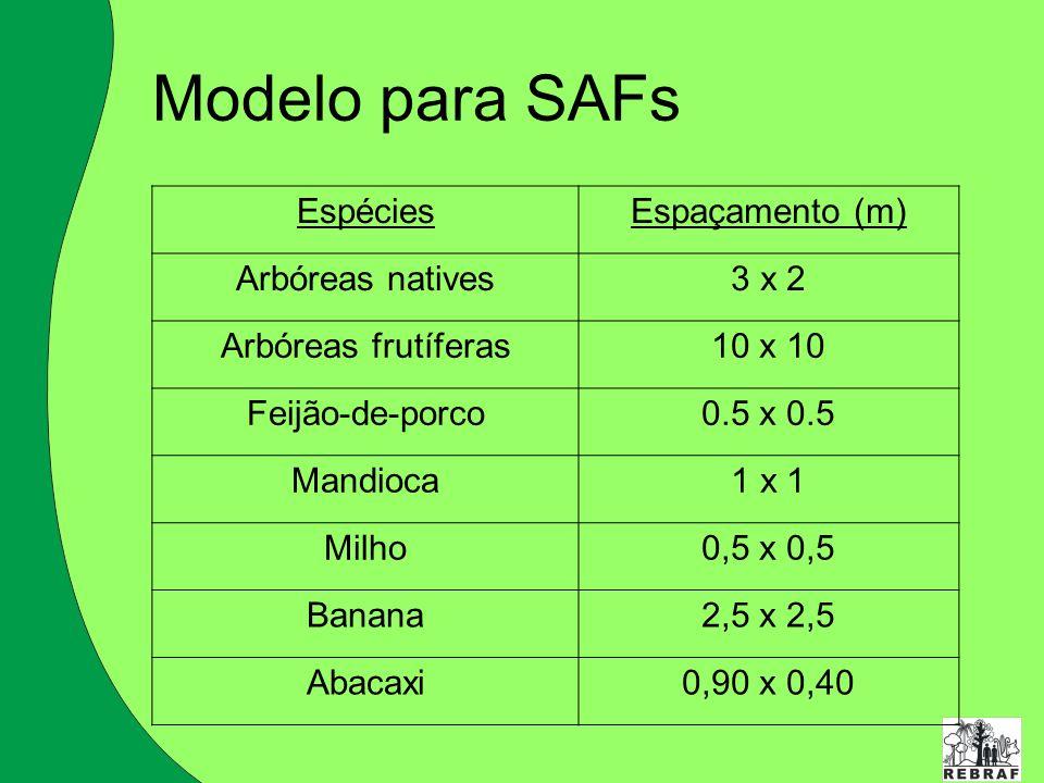 Modelo para SAFs EspéciesEspaçamento (m) Arbóreas natives3 x 2 Arbóreas frutíferas10 x 10 Feijão-de-porco0.5 x 0.5 Mandioca1 x 1 Milho0,5 x 0,5 Banana