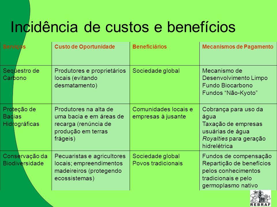 Incidência de custos e benefícios ServiçosCusto de OportunidadeBeneficiáriosMecanismos de Pagamento Seqüestro de Carbono Produtores e proprietários lo