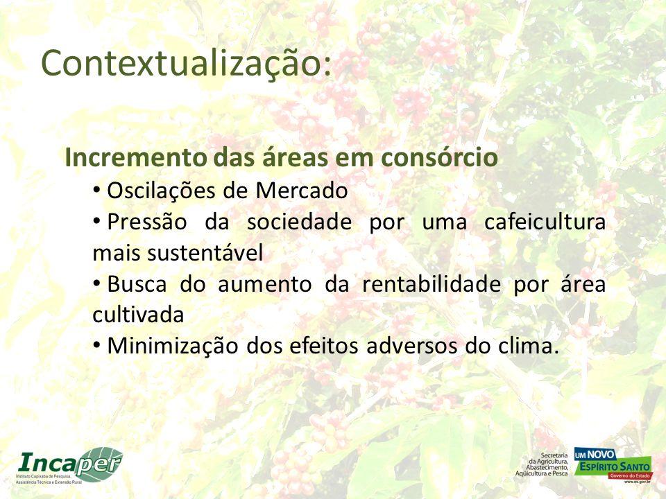 Contextualização: Incremento das áreas em consórcio Oscilações de Mercado Pressão da sociedade por uma cafeicultura mais sustentável Busca do aumento