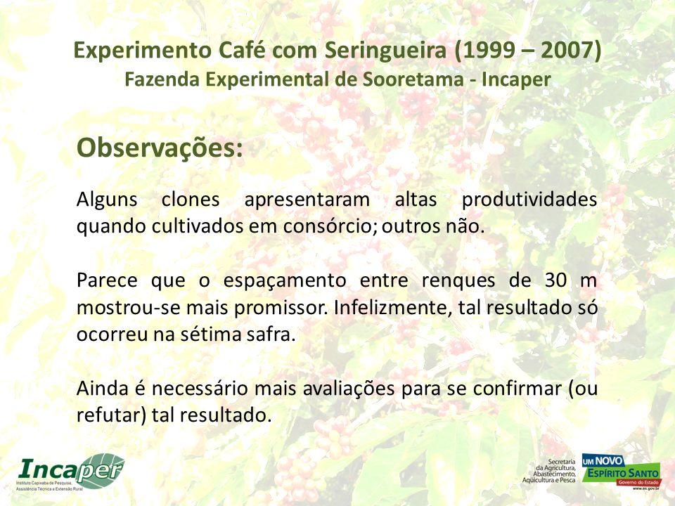 Experimento Café com Seringueira (1999 – 2007) Fazenda Experimental de Sooretama - Incaper Observações: Nova metodologia de avaliação a partir de 2006para estudos mais precisos do efeito do sombreamento.