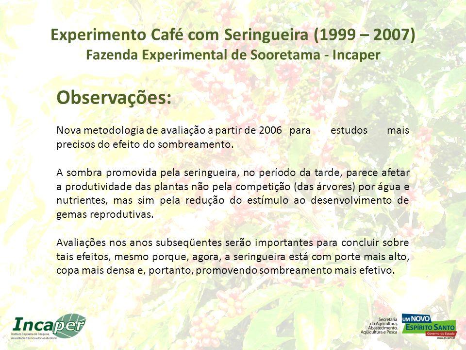 Experimento Café com Seringueira (1999 – 2007) Fazenda Experimental de Sooretama - Incaper Observações: Nova metodologia de avaliação a partir de 2006