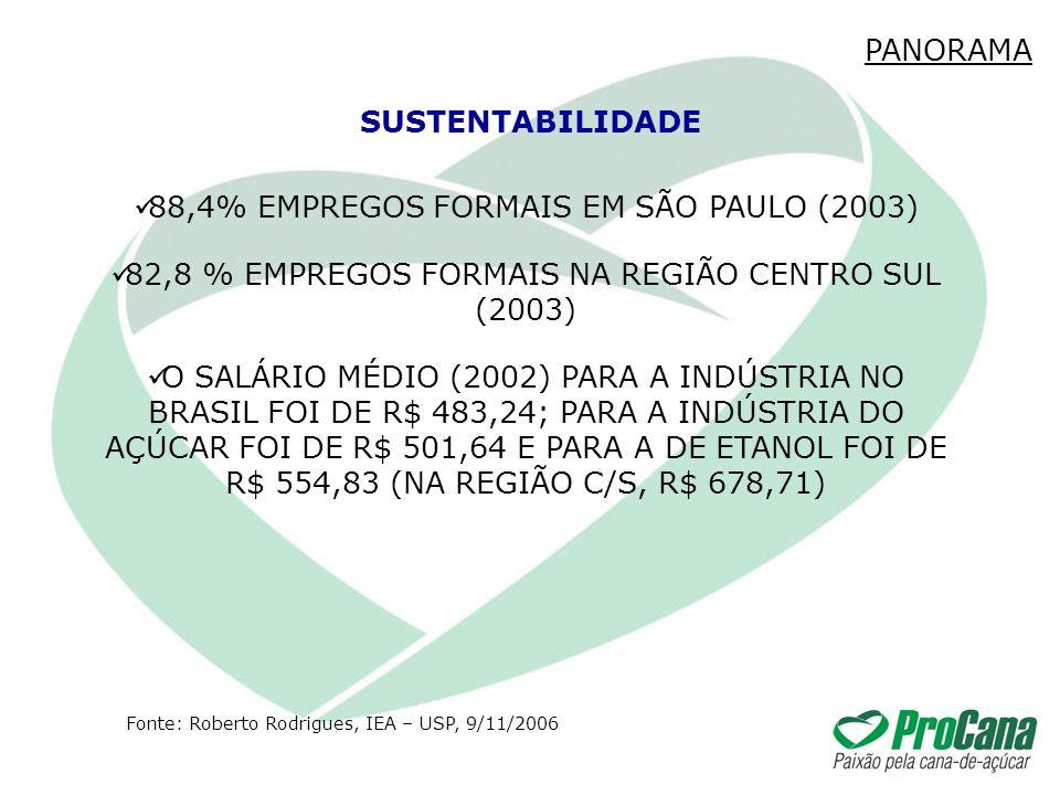 88,4% EMPREGOS FORMAIS EM SÃO PAULO (2003) 82,8 % EMPREGOS FORMAIS NA REGIÃO CENTRO SUL (2003) O SALÁRIO MÉDIO (2002) PARA A INDÚSTRIA NO BRASIL FOI D