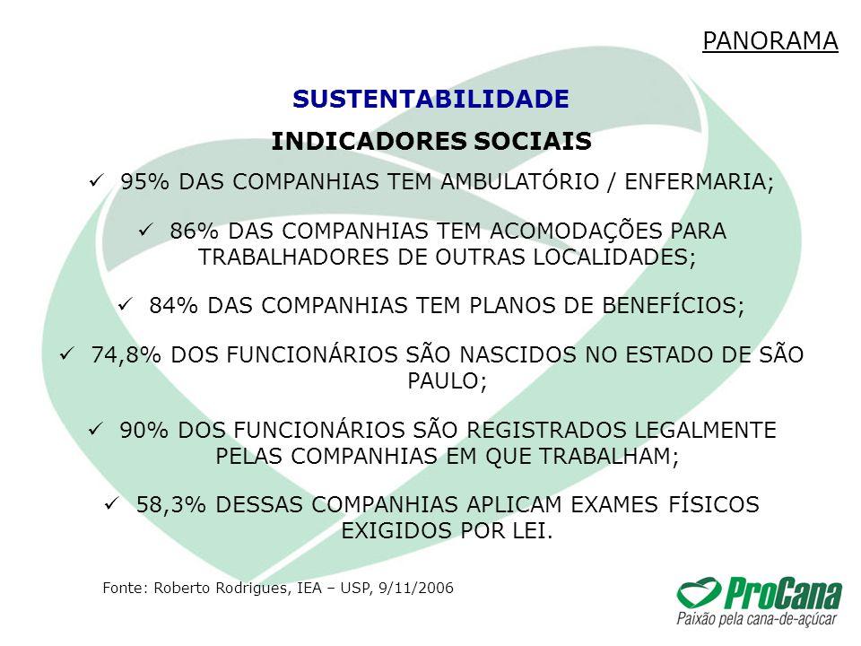INDICADORES SOCIAIS 95% DAS COMPANHIAS TEM AMBULATÓRIO / ENFERMARIA; 86% DAS COMPANHIAS TEM ACOMODAÇÕES PARA TRABALHADORES DE OUTRAS LOCALIDADES; 84%