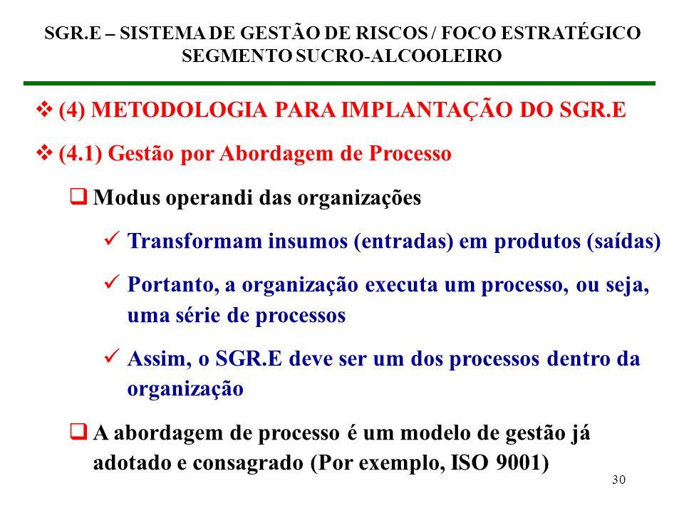29 SGR.E – SISTEMA DE GESTÃO DE RISCOS / FOCO ESTRATÉGICO SEGMENTO SUCRO-ALCOOLEIRO SUCESSO EFICIÊNCIA EFICÁCIA VALOR AGREGADO COMPETITIVIDADE GESTÃO