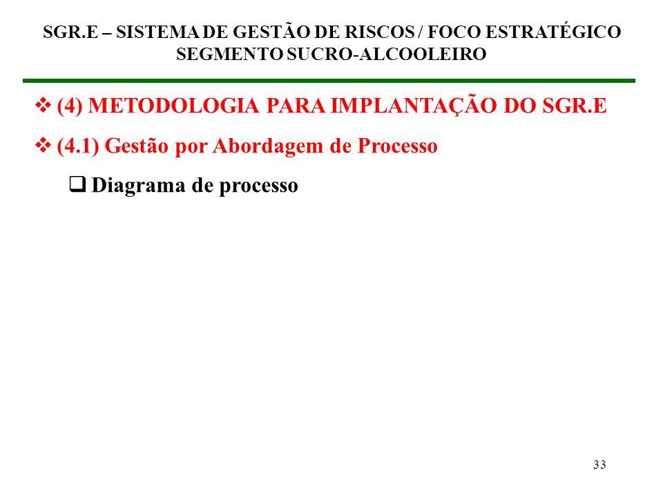 32 (4) METODOLOGIA PARA IMPLANTAÇÃO DO SGR.E (4.1) Gestão por Abordagem de Processo Insumo (em inglês, input) Em Economia designa um bem ou serviço ut