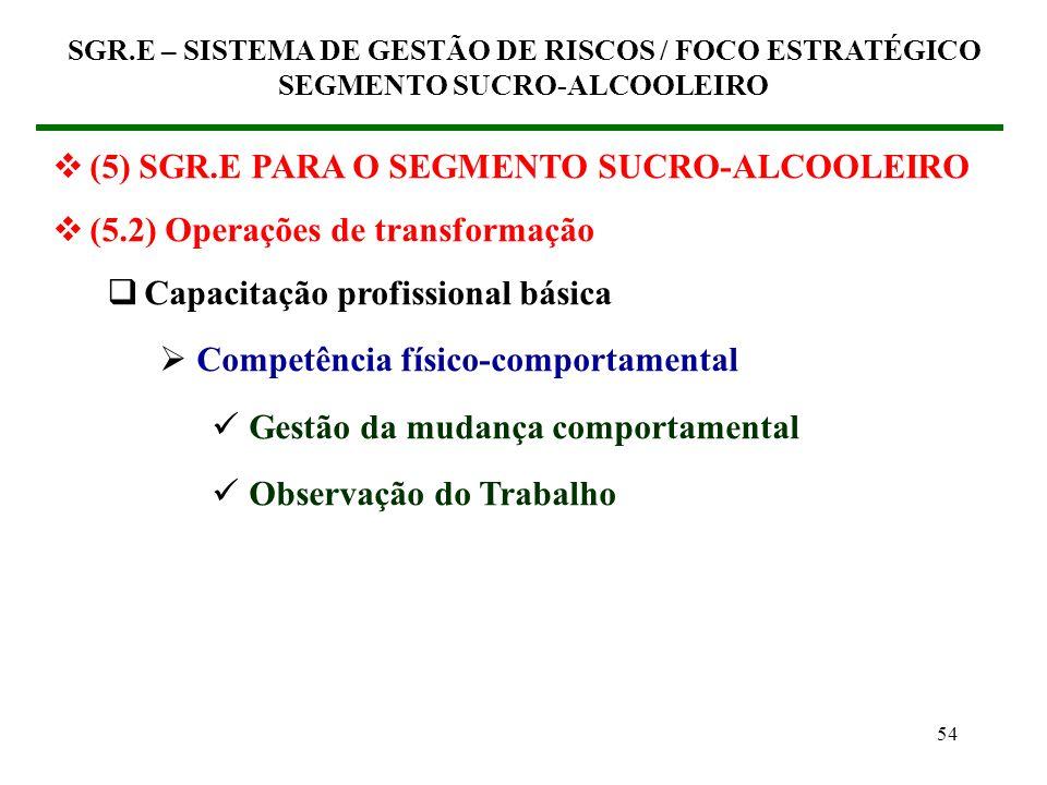 53 (5) SGR.E PARA O SEGMENTO SUCRO-ALCOOLEIRO (5.2) Operações de transformação Capacitação profissional básica Competência para a gestão Processo de g