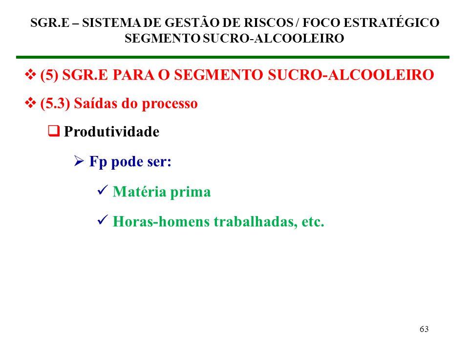 62 (5) SGR.E PARA O SEGMENTO SUCRO-ALCOOLEIRO (5.3) Saídas do processo Produtividade Fp pode ser: Tempo Custo Índice de não-conformidades Número de ac