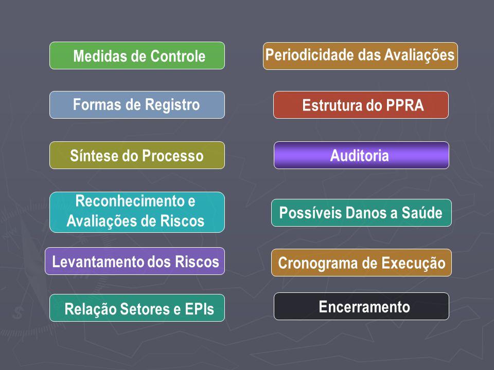 Medidas de Controle Formas de Registro Síntese do Processo Reconhecimento e Avaliações de Riscos Levantamento dos Riscos Relação Setores e EPIs Periodicidade das Avaliações Estrutura do PPRA Auditoria Possíveis Danos a Saúde Cronograma de Execução Encerramento