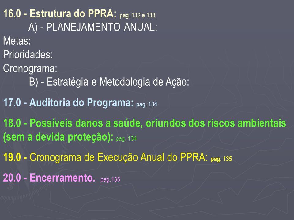 16.0 - Estrutura do PPRA: pag.