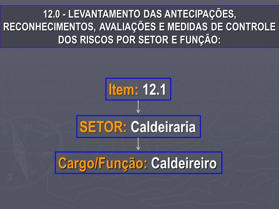 12.0 - LEVANTAMENTO DAS ANTECIPAÇÕES, RECONHECIMENTOS, AVALIAÇÕES E MEDIDAS DE CONTROLE DOS RISCOS POR SETOR E FUNÇÃO: SETOR: Caldeiraria Item: 12.1 Cargo/Função: Caldeireiro