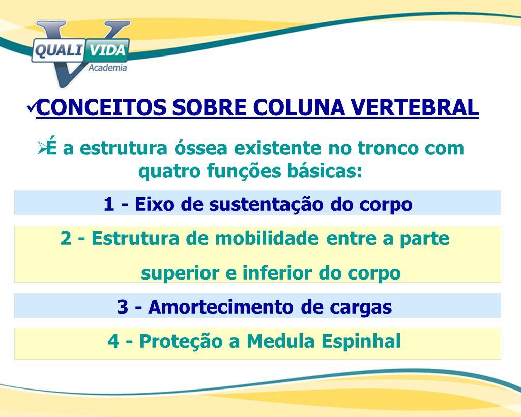 CONCEITOS SOBRE COLUNA VERTEBRAL 1 - Eixo de sustentação do corpo 2 - Estrutura de mobilidade entre a parte superior e inferior do corpo 3 - Amortecim