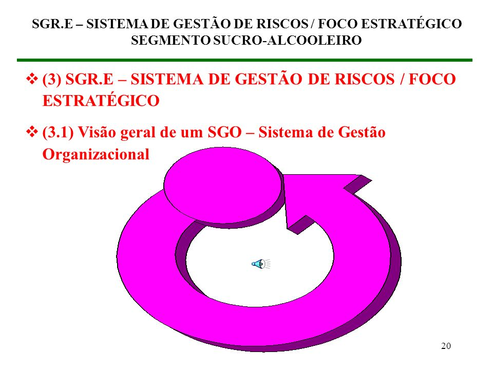 19 SGR.E – SISTEMA DE GESTÃO DE RISCOS / FOCO ESTRATÉGICO SEGMENTO SUCRO-ALCOOLEIRO Q0Q0 Q1Q1 Q2Q2 CUSTOSCUSTOS Curva B Curva A Curva C Curva D Q3Q3 M